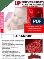 Expo Grupo Sanguineo