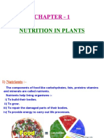 1 Nutrition in Plants