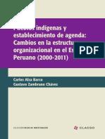 Pueblos Indigenas y establecimiento de agenda