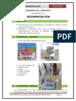 informe-n1-sedimentacion
