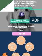 (Ppt) Perawatan Rawat Inap Anjing Kasus Gangguan Pencernaan Di Groovy Vetcare Clinic