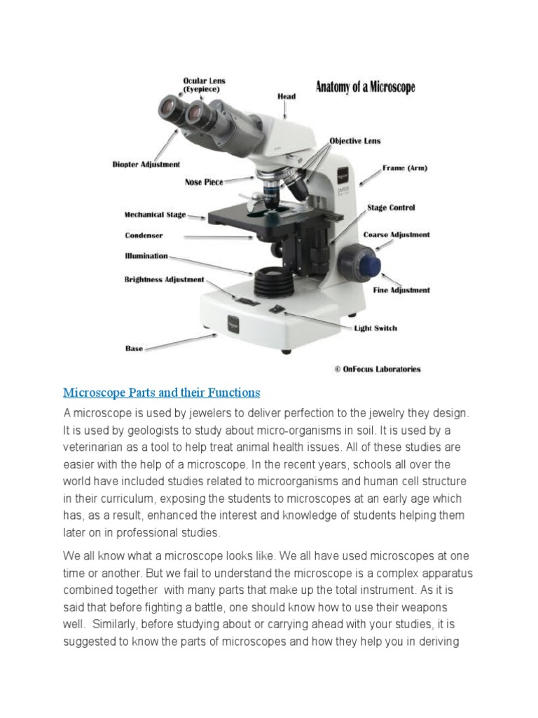 Microscope Parts and Their Functions | Microscope | Lens (Optics)