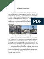 Hidrogen Sulfida (H2S) Edi Fix