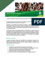 TdR Consultoría apoyo en la coordinación de producciones audiovisuales