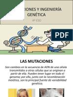 MUTACIONES E INGENIERIA GENÉTICA 4 ESO.pdf