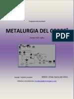 Programa Internacional Metalurgia Del Cobre