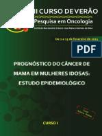 Apostila_Curso de Verao 2015_completa.pdf