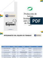 Produccion y Comercializacion de Bolsas Biodegradables 1