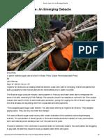 Brazil's Sugar Cane - An Emerging Debacle - WSJ