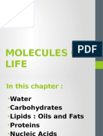 4.LECTURE 4 -MOLECULES OF LIFE.pptx