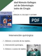 Universidad Rómulo Gallegos Colgajopdf