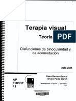 Terapia Visual Teoria