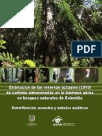 Estimación Carbono 2010