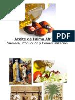 Presentación Aceite de Palma Africana