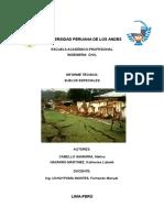 INFORME TECNICO DE SUELOS ESPECIALES.docx