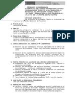07 TDR-Asistencia Técnica y Registro de Los Proyectos_HUARAZ