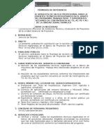 06 TDR-Asistencia Técnica y Registro de Los Proyectos_HUANUCO