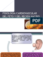 Fisio. Card. Ultimo