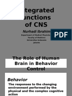 Synaps Org Integrat Function CNS