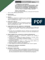 02 TDR-Asistencia Técnica y Registro de Los Proyectos_ANCASH