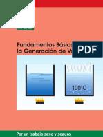 Fundamentos Generacion Vapor