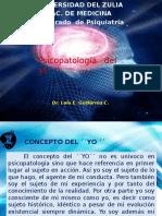 Psicopatología del Yo