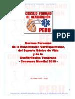 NORMAS PERUANAS 2010   OK.pdf