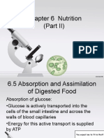 Chapter 6 Nutrition (Part II)