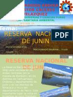 Áreas Naturales Protegidas de Junin