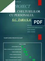 Proiect Info Audit