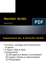 Nucleic Acids-rev.pptx