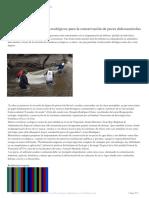 Sugieren-crear-corredores-ecológicos-para-la-conservación-de-peces-dulceacuícolas.pdf