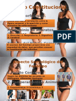 ESTADO CONSTITUCIONAL.pptx
