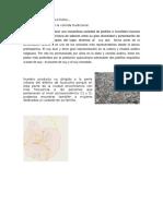 COMPORTAMIENTO CULTURAL.docx