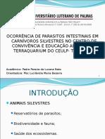 parasitos de animais silvestres.ppt