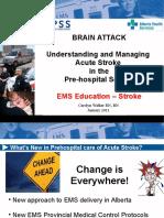 EMS Stroke Care Jan 2011 - handouts.ppt