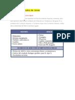 Criterios Fiebre Reumatica