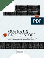 Biodigestor (1)
