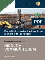 Remediacion Sostenible Nicole