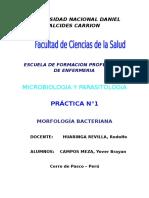 Informe-De Siembra de Bacterias