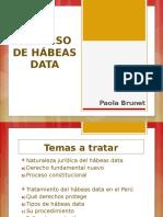 Clase 8 Habeas Data y Accion Cumplimiento