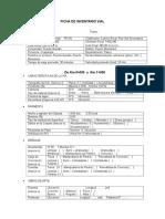 Ficha de Inventario Vial-gavilan
