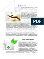 Salud Ambiental y Mas 5 Hojas