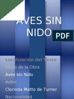 02 AvesSinNido