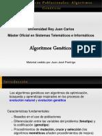 Algoritmos-Genéticos-en-PPT1 (1)