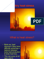 What is Heat Stress