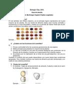 Guia semestral_ biologia.pdf