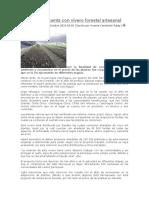 Canchagua Cuenta Con Vivero Forestal Artesanal
