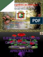 DIAPOSITIVAS-FINAL-DE-EJERCICIOS-PRACTICOS.pptx