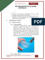 Evaluación Organoléptica de Aguas Naturales